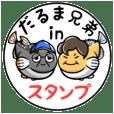 DARUMA MEDAKA brothers Sticker