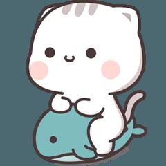 Cutie Cat-Chan Five