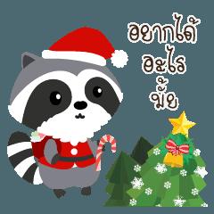 Araisan's holiday_chubby racoon