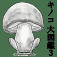Mushroom books vol.3