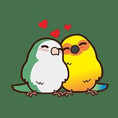 鳥妹愛嘰喳-七夕的鳥寶貝們