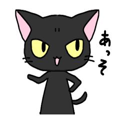 Black cat1234