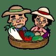 Funny vegetables have Shimizu farm