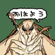 001_マニアックシリーズ(蛾)