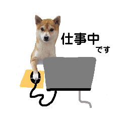 柴犬 すたんぷ part2