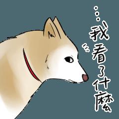 *Facepalm* Dog Lottery (ver. meme)