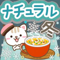 Natural cat, winter natural japan