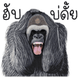 Hilarious animals _ Esarn Language