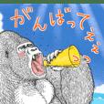 Gorilla gorilla gorilla 8