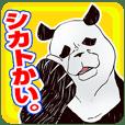 日雇いパンダ・清志(公園在住/39歳)