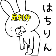 Dialect rabbit [ahikaga3]