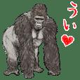 君とゴリラ 3 / よく使う言葉,敬語&日常編