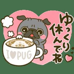 黒パグちゃん♡冬