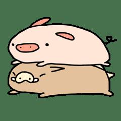 安心小豬豬