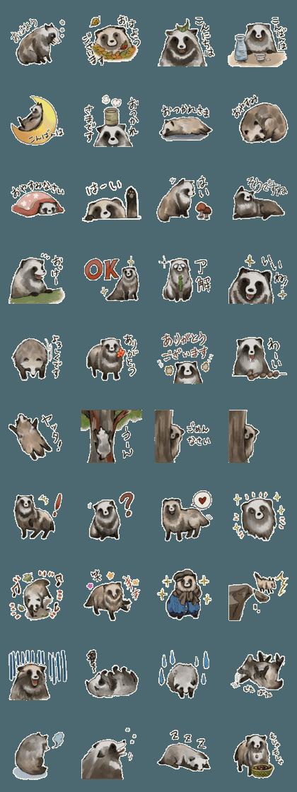 cute round raccoon dog