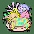 Cutie flowers