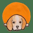 ビーグル犬のスタンプ