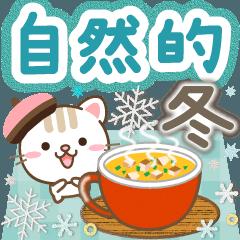 Natural cat, winter natural china