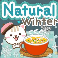 Natural cat, winter natural english
