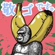 Honorific of Gorilla gorilla gorilla