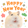 THE HAMSTER New Year's Greetings