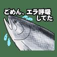リアル水族館~日常会話~