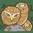 猛禽類スタンプ(フクロウ,ワシ,鷹,etc.)