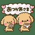 fuwamoco toy poodle