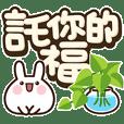 Fat Bunny-Big Character Club