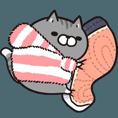 Plump cat in winter