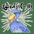 hashibrokou-san(shoebill)