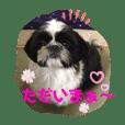 noririn_20191224215718