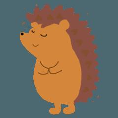 Hedgehog hariri