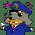 Duchshund&Poodle