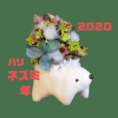ハリネズミ☆ハリボックリ2020