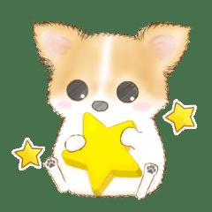 A Cute Dog Named Kotaro Line Stickers Line Store