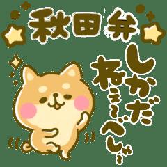 豆柴日和♡秋田弁