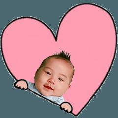จินเจอร์: อายุ 6 เดือน