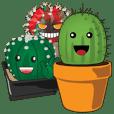 Smiley Cacti