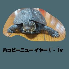 fukume_20200108101855