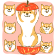 柴犬こうめの忠犬ライフ(デカ顔文字付き)