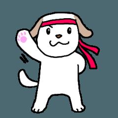 beagle dog milk