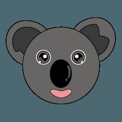 Koala Large head paste