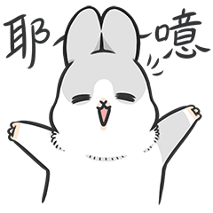Machiko rabbit4