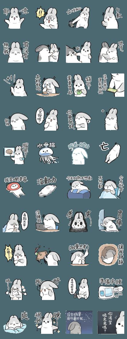 Machiko rabbit4