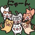 6にゃん子猫(パート2)