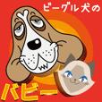 ビーグル犬のバビー