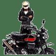 bikers Life 12th