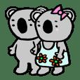 Koala Couple