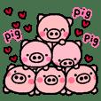 pig heart 3(English)